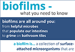 Biofilms: What you need to know